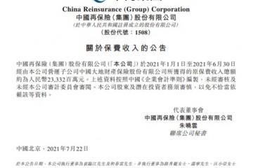 中国再保险大地财险上半年保费收入同比下滑约8.39%至233.32亿元